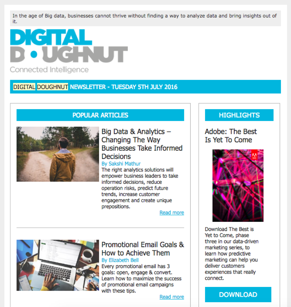 Marketing newsletters -- Digital Doughnut
